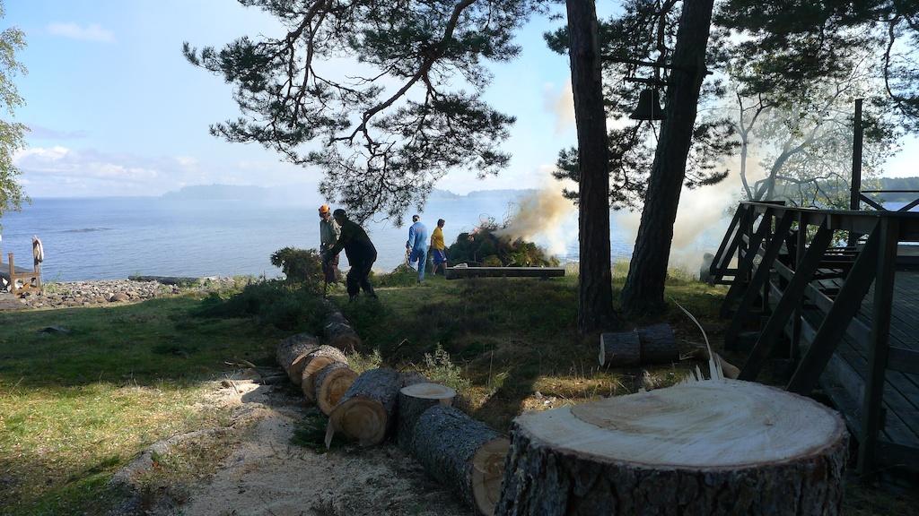 Stenudden trädfällning